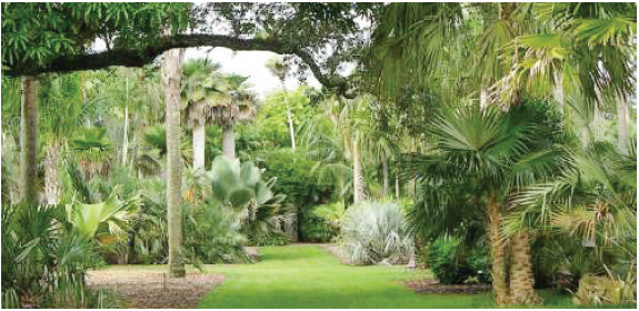 Botanical Gardens Blog Post
